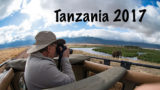 Tanzania Photo Safari with Shutter Tours