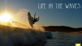 """Nikon D7100 – """" LIFE IN THE WAVES"""""""
