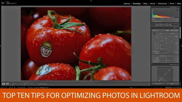 Optimizing Photos in Lightroom