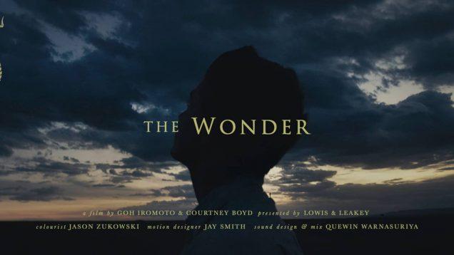TheWonder