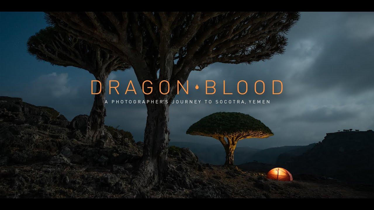 Dragon Blood – A Photographer's Journey to Socotra, Yemen
